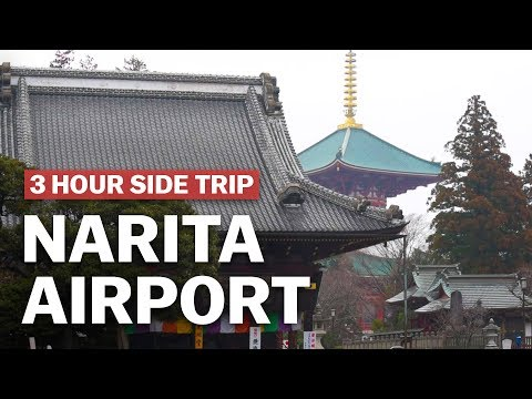 3 Hour Side Trip from Narita Aiport, Naritasan Shinshoji Temple | japan-guide.com