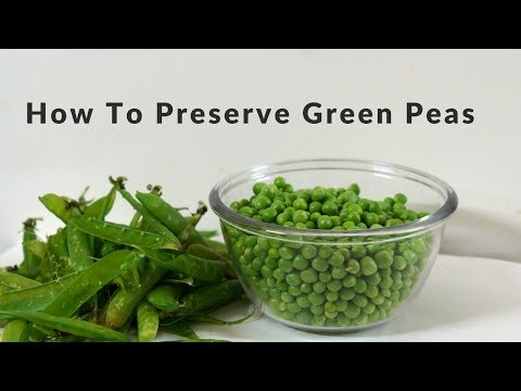 How to Preserve Green Peas - ग्रीन मटर को कैसे सटेर करें - Easy Way to Store Mattar without boiling