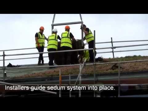 R&A Equipment Testing Centre - Green Roof Sedum System Installation by Bauder