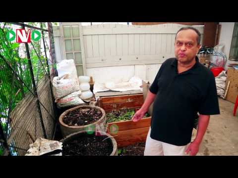 How to make organic compost at home-Harish Mysore 4