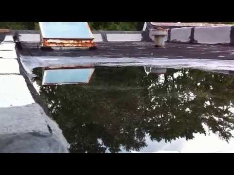 Flat Roof Leaking? - You might be surprised!