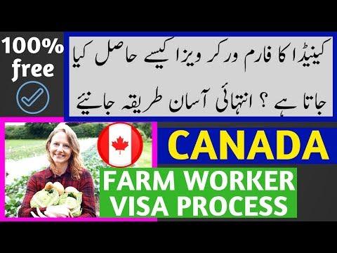 Canada Fram Worker Visa Complete Process
