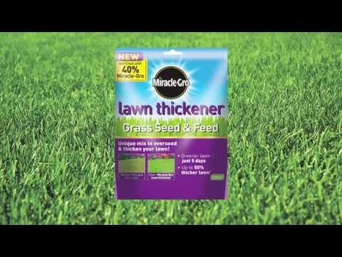 How To Repair a Patchy Lawn
