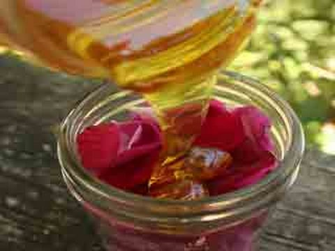 Rose Infused Lip Repairing Balm for Petal Smooth, Soft Pink Lips - Onlymyhealth.com
