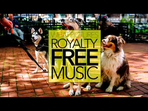 R&B/Soul Music [No Copyright & Royalty Free] Upbeat Positive | WALKING THE DOG