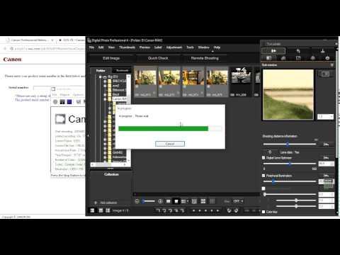 Converting RAW files to Jpeg using Canon Digital Photo Professional 4.x.x
