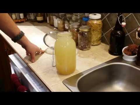Kefir Water and Vermicomposting