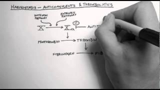Haemostasis 3 - Anticoagulants & Thrombolytics