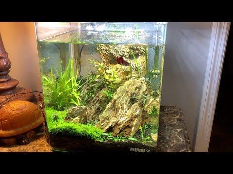Feb PlantPak & Mini Update