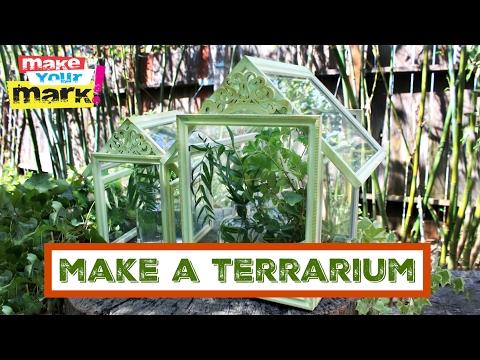 How to: Dollar Store Glass Terrarium