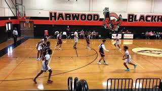 Harwood (chance Carpenter #10) 3 Game Highlights - North Ridge, Richland & Hurst