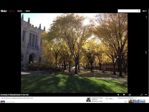 Adding Pictures From Flickr to Your Wordpress Blog