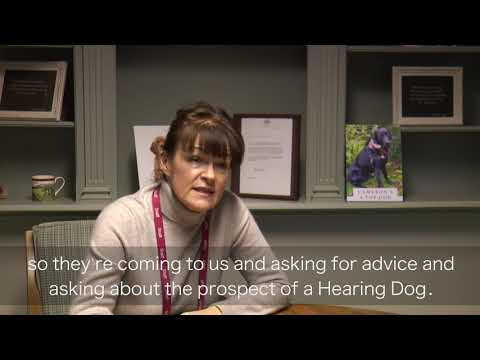 The cost of a Hearing Dog