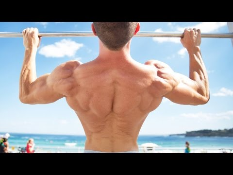 3 Must do Exercises to Master the Pullup