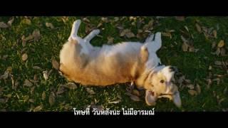 A Dog's Purpose | Film Clip 3 | Thai sub