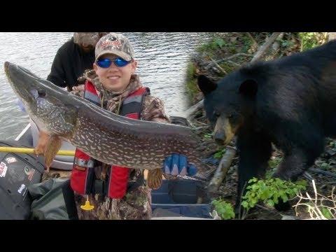 Black Bears Beware! John O'Dell and Son Head North to Saskatchewan!