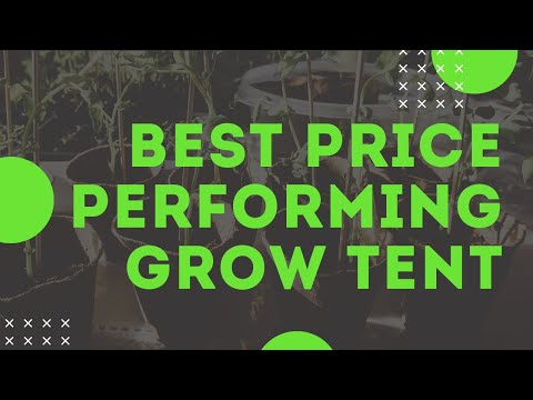 Best Inexpensive Grow Tent & Grow Room Review - Plant House Grow Tents