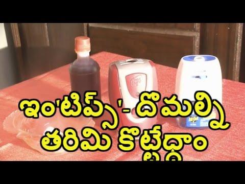 ఇం'టిప్స్'- దోమల్ని తరిమి కొట్టేధ్దాం    mosquito repellent made easy   amaravathi media