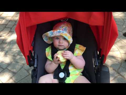Baby eats apple at 8 months