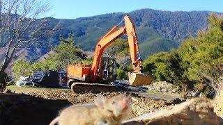 Abandoned digger gets put back to work