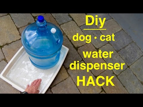 How to make a ● DOG/CAT ● Large ● Self filling ● Water Dispenser