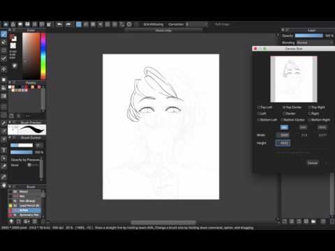 [Medibang Paint Pro desktop version how to] Resize your image with Mesh Transform