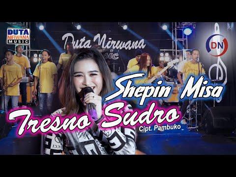Download Lagu Shepin Misa Tresno Sudro Mp3