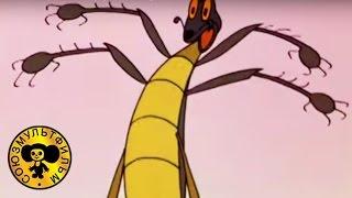 Download Тараканище | Русские сказки мультики для детей (Чуковский) Video