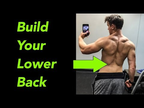 Top 5 Exercises for Lower Back (At Gym AND HOME)