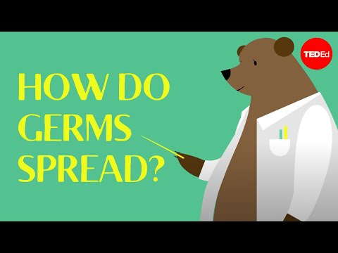 How do germs spread (and why do they make us sick)? - Yannay Khaikin and Nicole Mideo