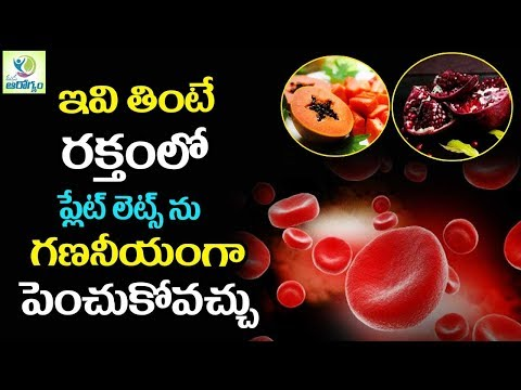 Top  Foods to Increase Your Blood Platelets Count Fast - Mana Arogyam Telugu health Tips
