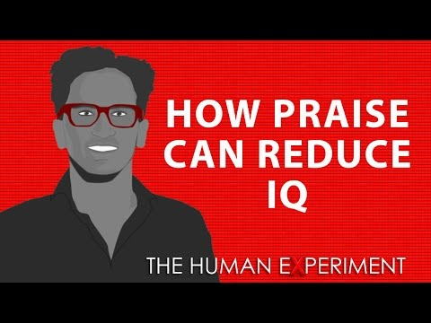 How Praise Can Reduce Your Kid's IQ