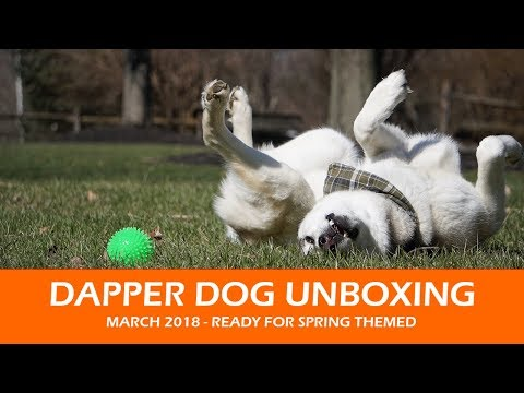 Dapper Dog Unboxing  |  March 2018 Ready for Spring Themed