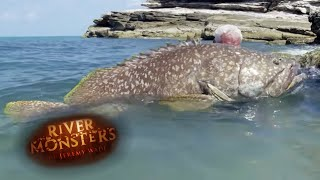 Jeremy Wade Has a Very Painful Hands on Experience With a Giant Grouper - River Monsters