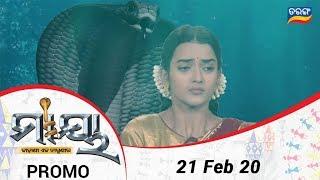 Maaya- କାହାଣୀ ଏକ ନାଗୁଣୀର | 21 Feb 20 | Promo | Odia Serial - TarangTV
