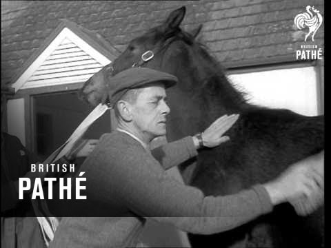 The Sheshoon Stud Stables (1960)