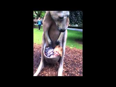 Bristol Zoo Behaviour