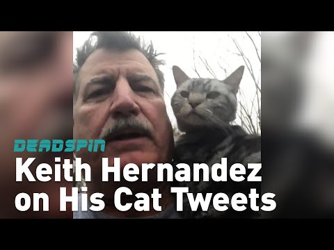 Keith Hernandez and His Cat Are A Twitter Sensation