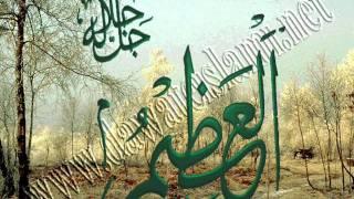 #x202b;الشيخ محمد عيون ابوعامر قصيدة صوت الحق يشجينى#x202c;lrm;
