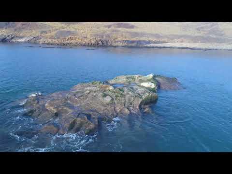 Kirkcaldy Seals FF 4K 24th March 2018