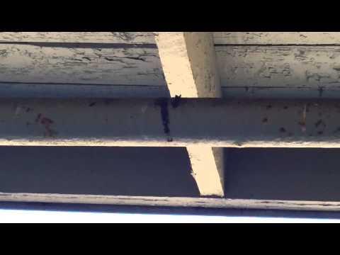 Sprinkler system leak