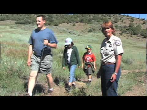 Mountain Lion Safety