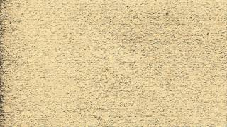 Paper Texture Loop- 12fps