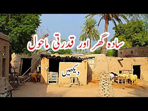 Natural Punjab Village Life | Mud Houses | Rural Pakistan