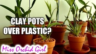 Download Why I grow Orchids in clay pots, not clear plastic pots Video