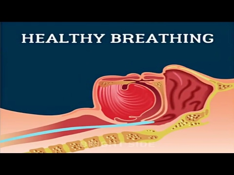 When you Snore | What happen in your body | INVENTIOUS