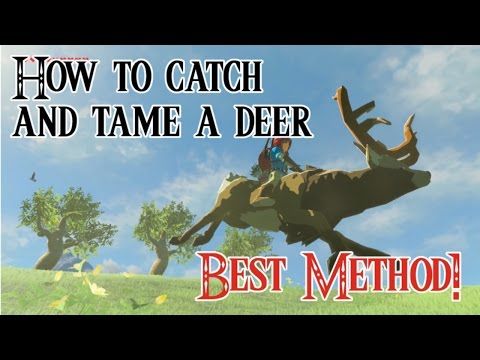 How To Catch and Tame a Deer in Zelda Breath of the Wild