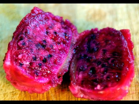 How to cut and Eat Cactus Fruit (Prickly Pear)