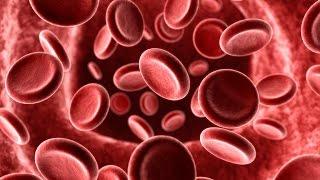 Cosa sono i gruppi sanguigni? (SciShow - Sub Ita)