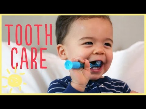 TIPS   TODDLER TOOTH CARE w/ pediatric dentist